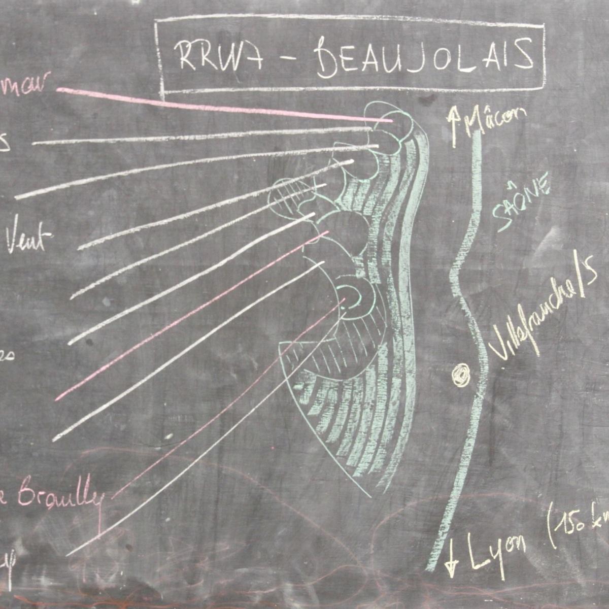 Carte des Crus du Beaujolais oenologie Bordeaux